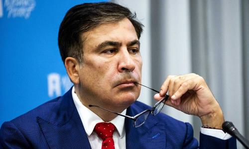 Саакашвили предложил Киеву разрабатывать собственные ресурсы после запуска «Севпотока - 2»