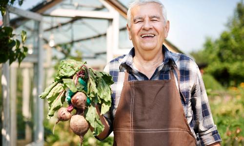 Как прожить дольше: назван простой продукт для долголетия